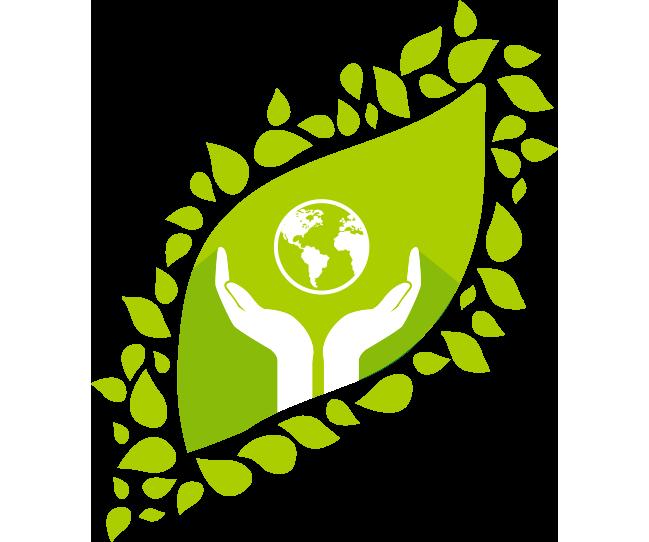 green-logistic_2